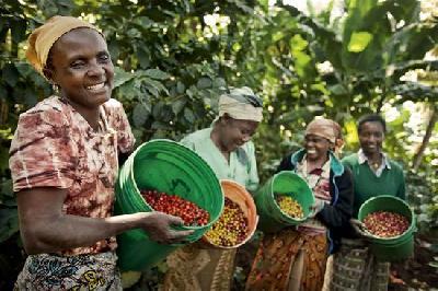cambiare il mondo con una tazzina di caffe diba 70 distributori professionali rassegna stampa