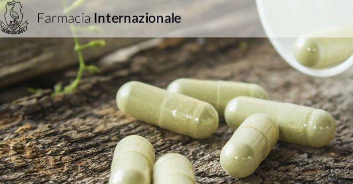 ANDREA Anzio foto 5