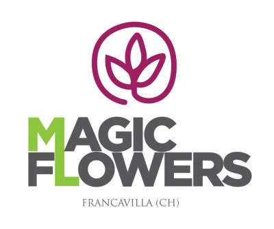 MAGIC FLOWERS DI D'ONOFRIO PAOLA