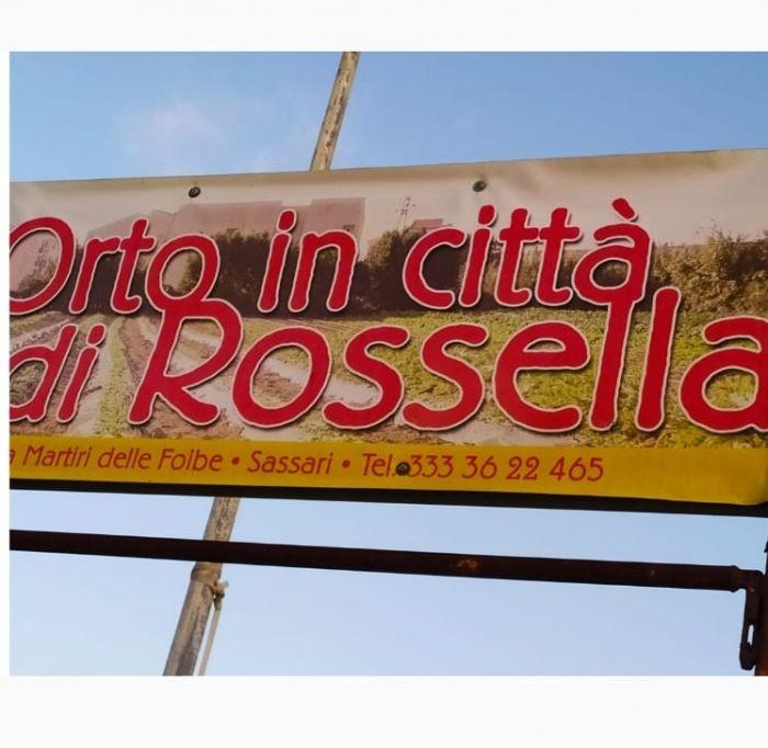 ROSSELLA Sassari foto 1