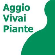 AGGIO VIVAI PIANTE
